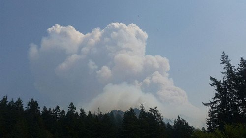 Eagle Creek fire photo: OSP