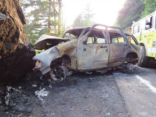 Single Vehicle Fatal Crash on Highway 126E near Milepost 30
