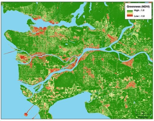 This map shows levels of greenness in Vancouver, British Columbia. Babies in greener areas had highe